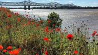 As it flows past Natchez, the Mississippi River shapes the land that tries to hold it in check. As I stood on the bluff watching the river, I thought I […]
